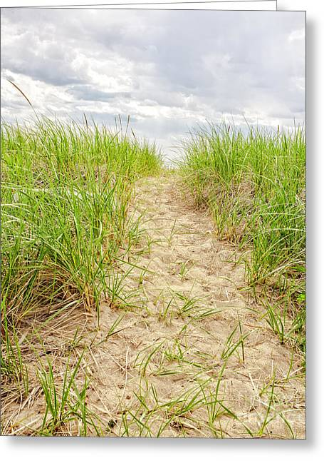 Saybrook Greeting Cards - Path to the beach Greeting Card by Edward Fielding