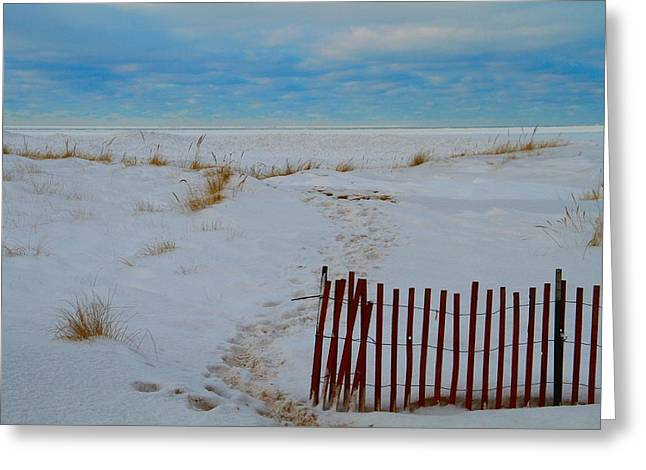 Winter Beach In Saint Joseph Michigan Greeting Card by Dan Sproul