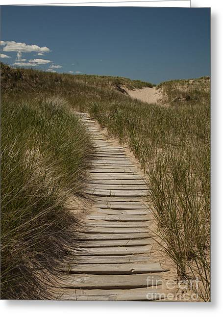 Wooden Stairs Greeting Cards - Path to the Beach Greeting Card by Timothy Johnson