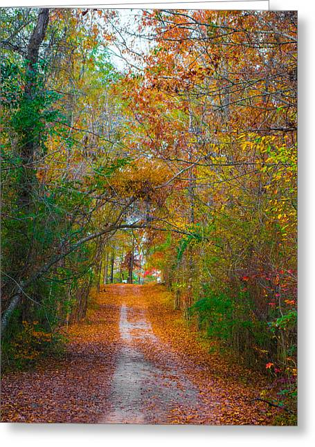 Loveliness Greeting Cards - Path to the Fairies Greeting Card by Parker Cunningham