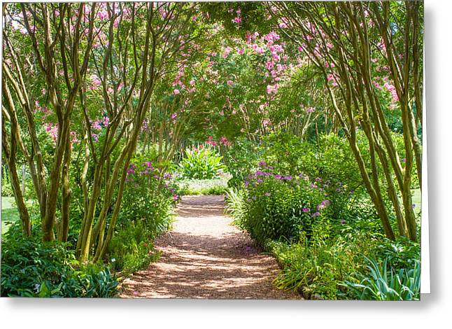 The Hermitage Greeting Cards - Path To The Garden Greeting Card by Robert Hebert
