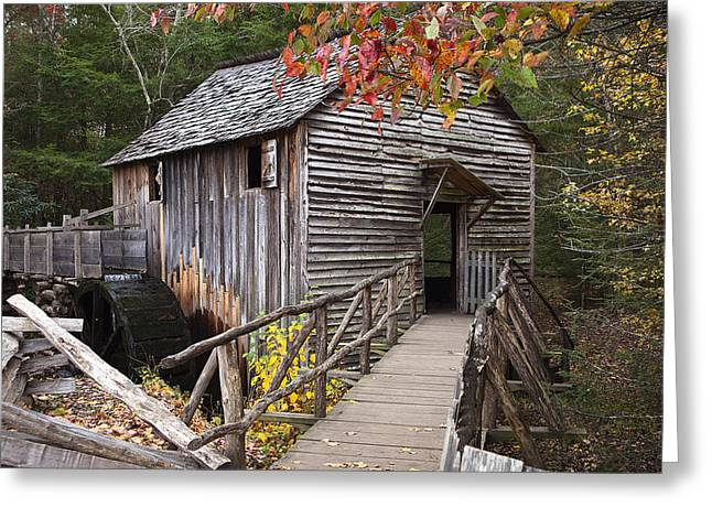 Water Mill Greeting Cards - Path to the Mill Greeting Card by Andrew Soundarajan