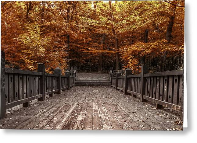 Wooden Stairs Greeting Cards - Path to the Wild Wood Greeting Card by Scott Norris