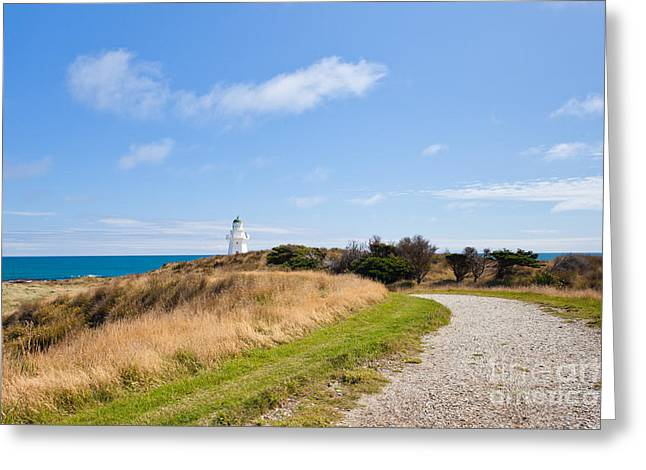 Restore The Shore Greeting Cards - Path to Waipapa Point Lighthouse The Catlins of NZ Greeting Card by Stephan Pietzko