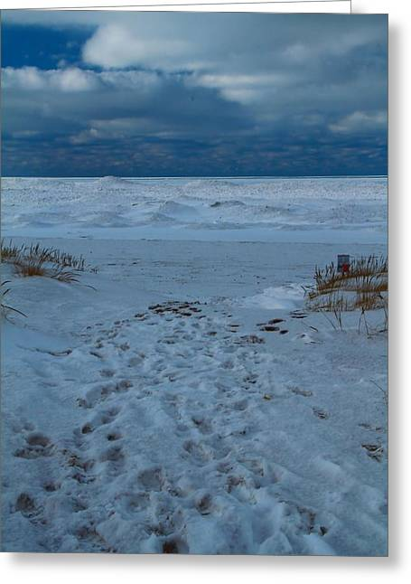 Snowstorm Greeting Cards - Path Toward The Winter Beach Greeting Card by Dan Sproul