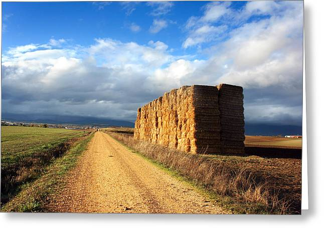 Bale Greeting Cards - Path with square bales Greeting Card by Mikel Martinez de Osaba