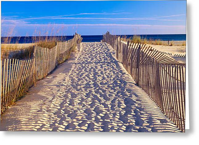 Pathway And Sea Oats On Beach At Santa Greeting Card by Panoramic Images