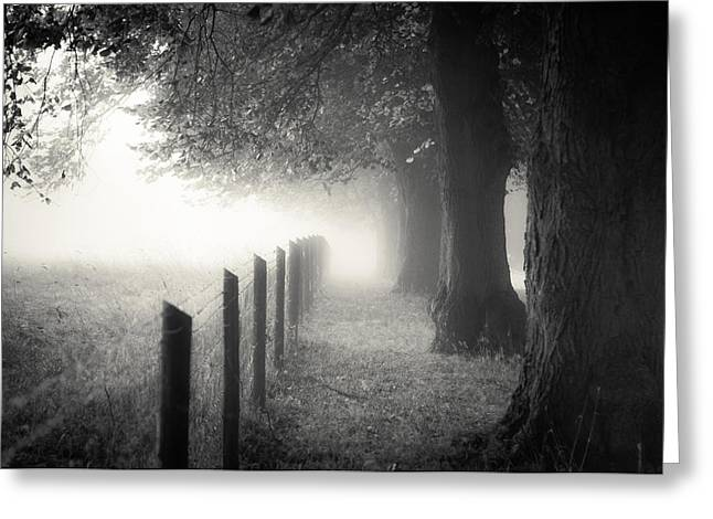 Clinton Greeting Cards - Pathway Greeting Card by Chris Fletcher
