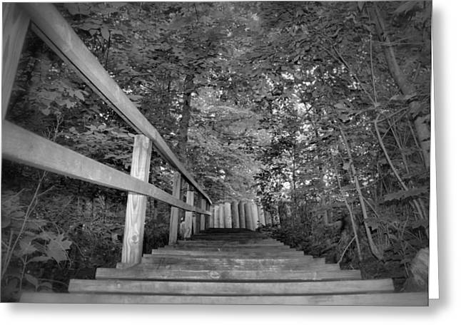 Wooden Stairs Greeting Cards - Pathway Greeting Card by Dan Sproul