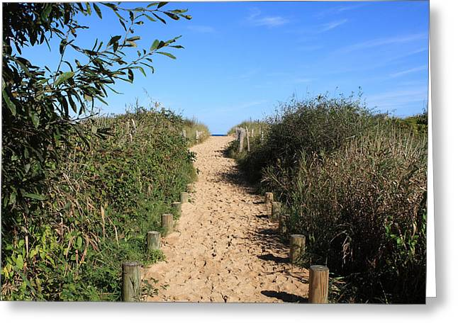 Footprints In The Sand Greeting Cards - Pathway Leading To Omaha Beach Greeting Card by Aidan Moran