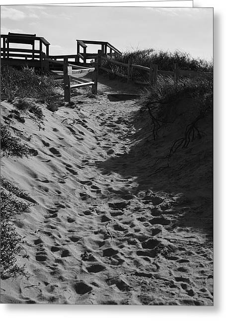 Marconi Beach Greeting Cards - Pathway Through the Dunes Greeting Card by Luke Moore