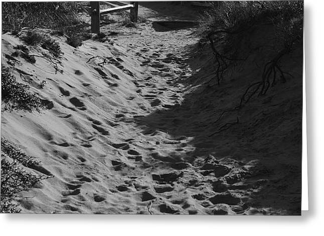 Pathway Through the Dunes Greeting Card by Luke Moore