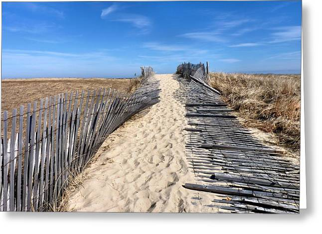 Scusset Beach. Greeting Cards - Pathway to beach Greeting Card by Janice Drew