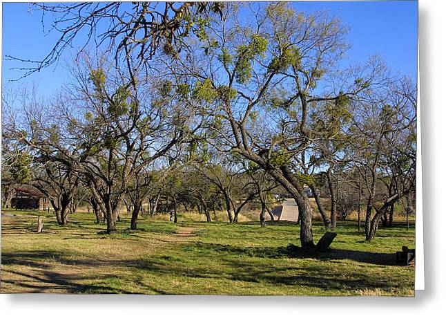 Texas Parks Greeting Cards - Pathway to Beyound Greeting Card by Linda Phelps