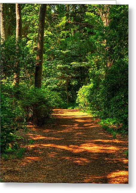 Nature Scene Mixed Media Greeting Cards - Pathway To Peace Greeting Card by Mel Steinhauer
