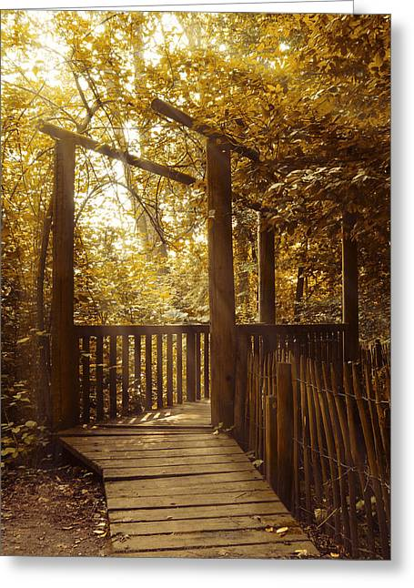 Pathways Greeting Cards - Pathway Greeting Card by Wim Lanclus