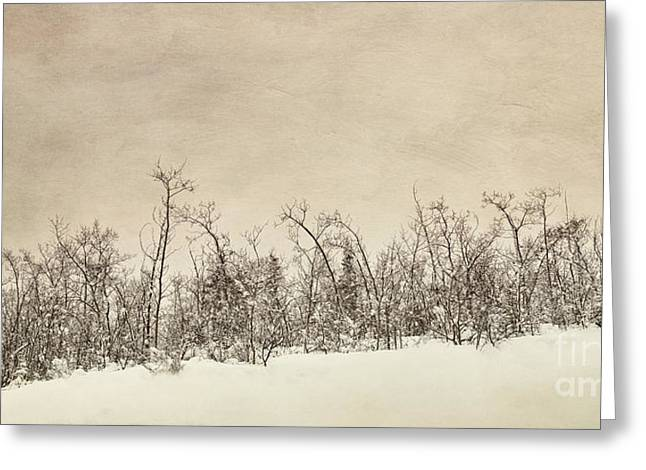 Winter Scene Photographs Greeting Cards - Patience Greeting Card by Priska Wettstein