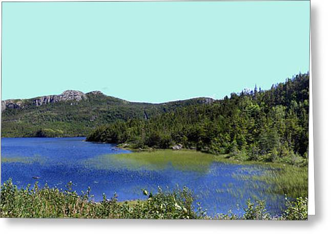Lazy Days Of Summer Print Greeting Cards - Patiently waiting at Rocky Pond Greeting Card by Barbara Griffin