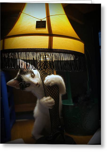 Leg Lamp Greeting Cards - Patrick vs. Leg Lamp Greeting Card by Laurie Perry