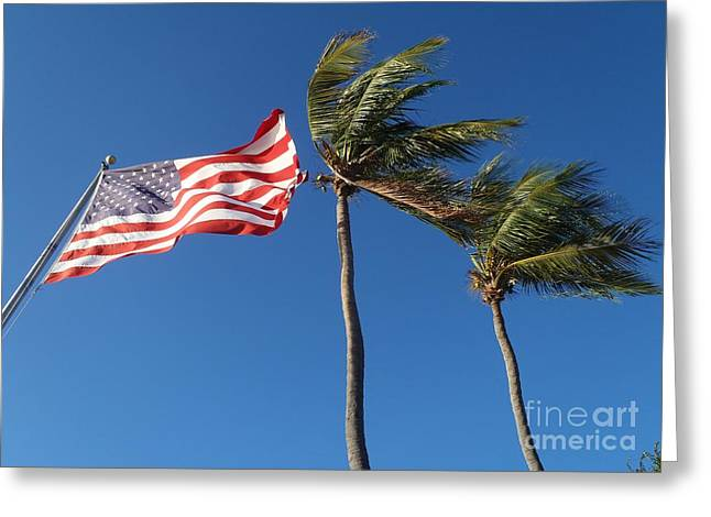 Patriot Keys Greeting Card by Carey Chen