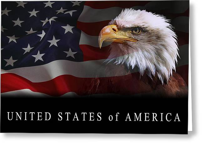Eagle And Flag Greeting Cards - Patriot United States 2 Greeting Card by Daniel Hagerman