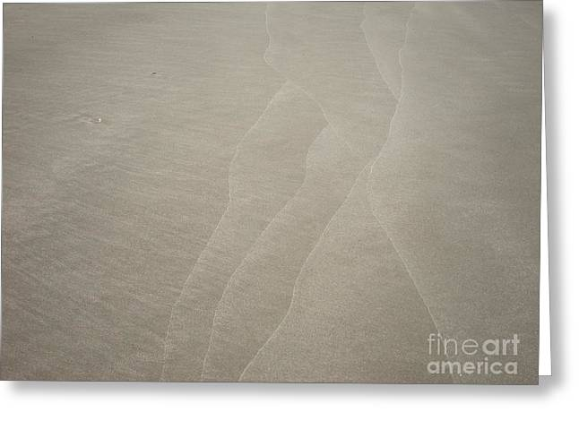 Sand Pattern Greeting Cards - Patterns in the Sand Greeting Card by Bill Talich