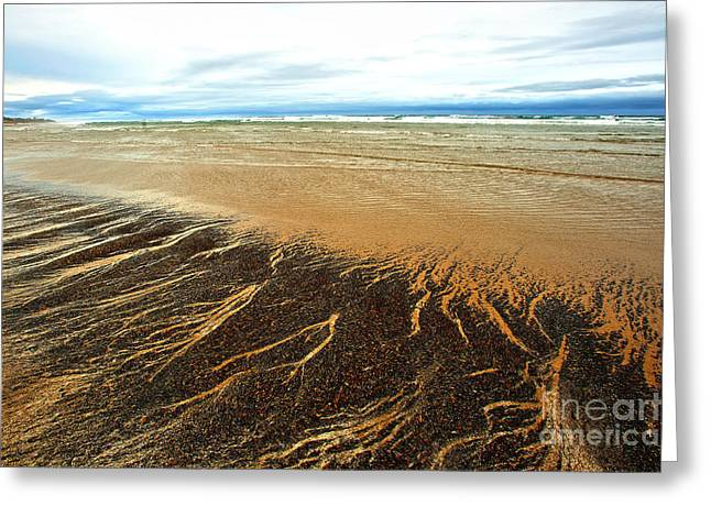 Agate Beach Oregon Greeting Cards - Patterns in the Tides Greeting Card by Artist and Photographer Laura Wrede
