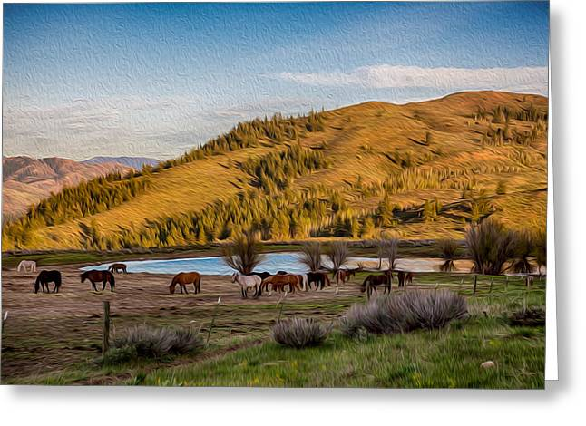 Owfotografik Mixed Media Greeting Cards - Patterson Mountain Afternoon View Greeting Card by Omaste Witkowski