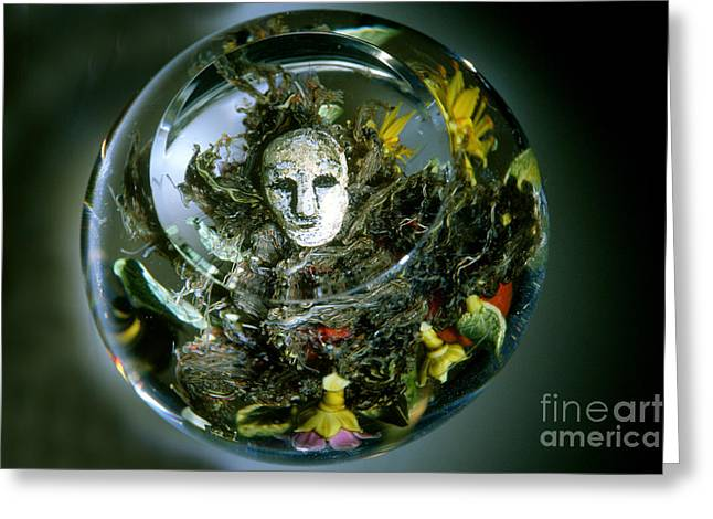 Paperweight Greeting Cards - Paul Stankard Paperweight Greeting Card by James L. Amos
