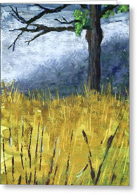 Rural Landscapes Pastels Greeting Cards - Pauls Tree Greeting Card by Garry McMichael