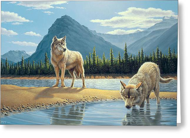 Wildlife Lakes Greeting Cards - Pause for a Drink-Wolves Greeting Card by Paul Krapf