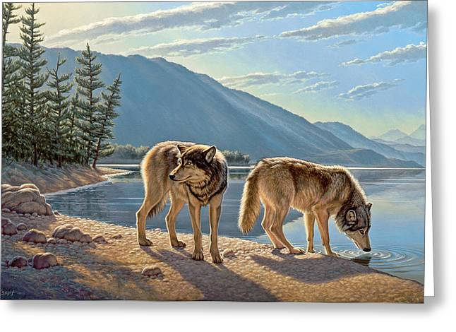 Wildlife Lakes Greeting Cards - Pause on the Way Greeting Card by Paul Krapf