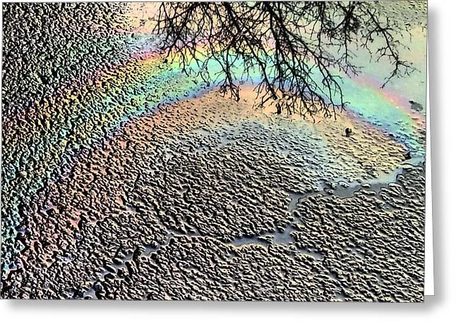Oil Slick Greeting Cards - Pavement Rainbow  Greeting Card by Denise Keegan Frawley