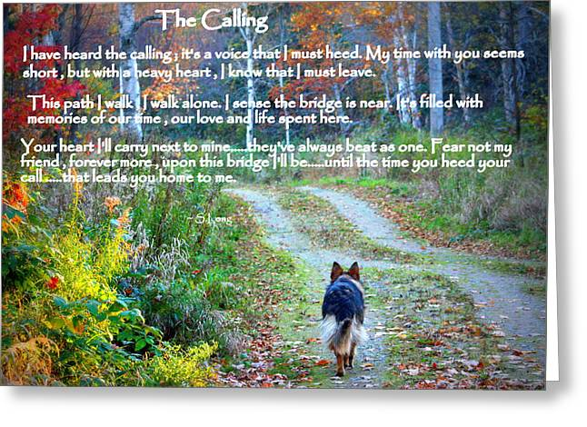 German Shepherd Greeting Cards - Paw Prints The Calling Greeting Card by Sue Long
