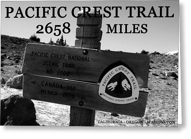 Pacific Crest Trail Greeting Cards - PC trail 2658 miles Greeting Card by David Lee Thompson