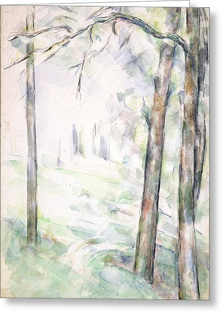Impressionist Drawings Greeting Cards - Pd.6-1966r The Woods, Aix-en-provence Greeting Card by Paul Cezanne