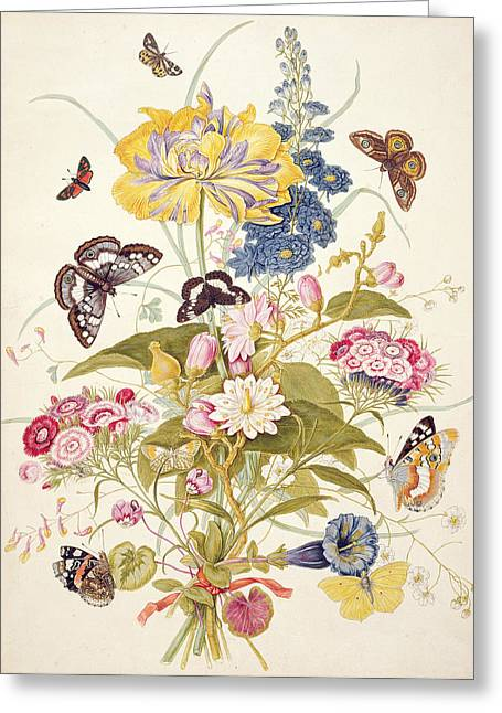 Butterflies Drawings Greeting Cards - Pd.912-1973 Still Life Of Flowers Greeting Card by Thomas Robins