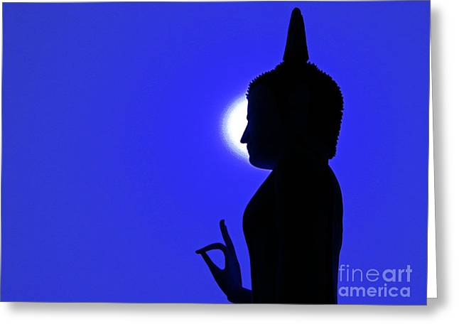 Misunderstanding Greeting Cards - Peace and Harmony  Greeting Card by Davids Digits