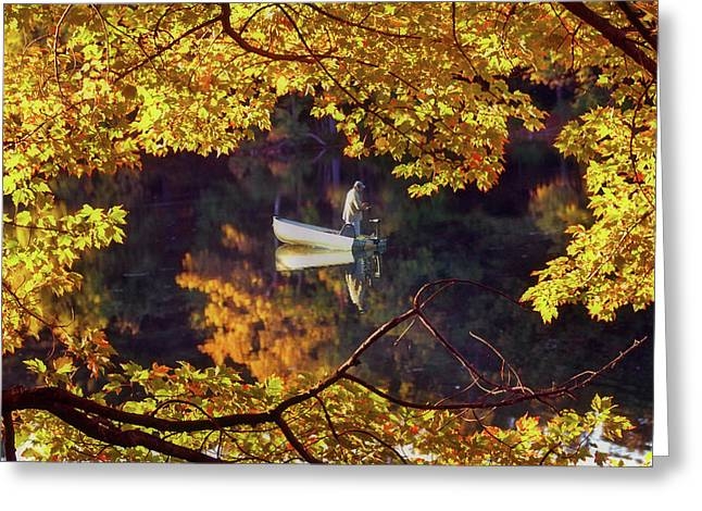 New Hampshire Leaves Greeting Cards - Peace Greeting Card by Joann Vitali