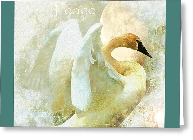 Solstice Greeting Cards Greeting Cards - Peace Greeting Card by Kathy Bassett