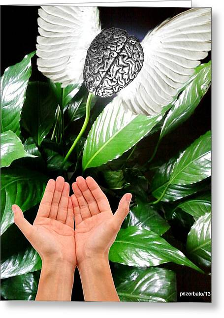 Consume Digital Greeting Cards - Peace Lily For The Consciousness Greeting Card by Paulo Zerbato