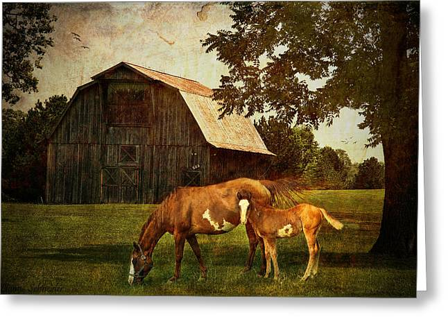 Seasonal Prints Rural Prints Greeting Cards - Peace of country living Greeting Card by Lianne Schneider