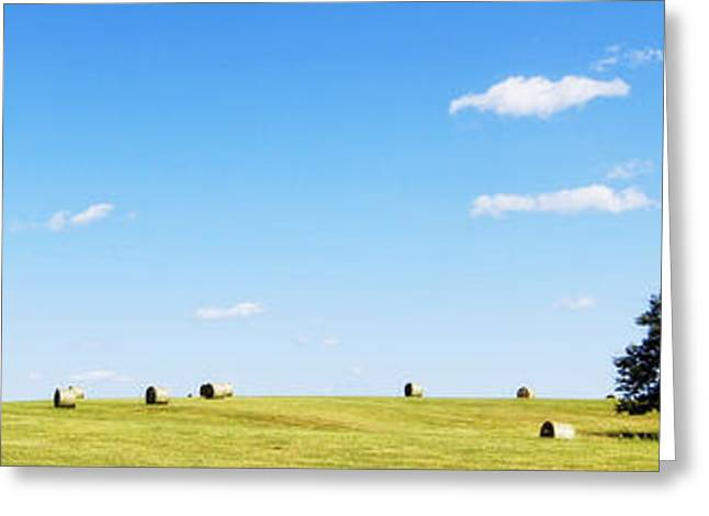 Hay Bales Greeting Cards - Peace of Mind Greeting Card by Cricket Hackmann