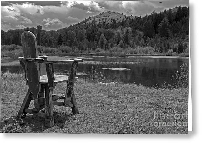 Lawn Chair Greeting Cards - Peace of Mind not Comfort Greeting Card by Wildlife Fine Art