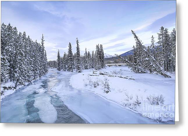 Banff Greeting Cards - Peace Without End Greeting Card by Evelina Kremsdorf