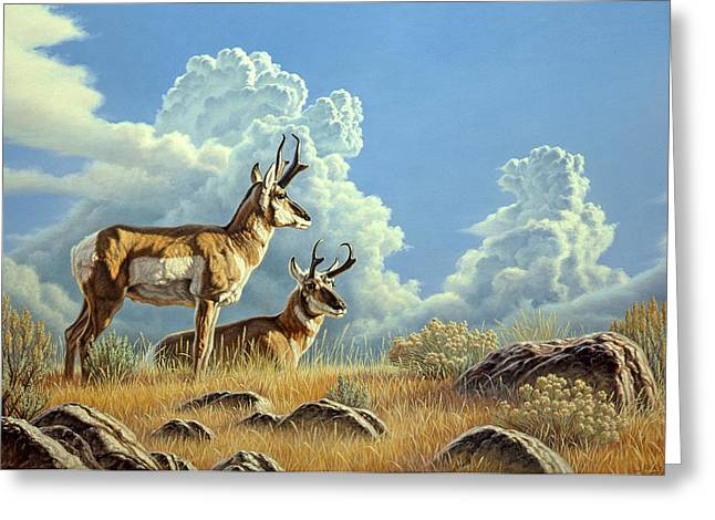 Cloudscape Greeting Cards - Peaceful Afternoon Greeting Card by Paul Krapf