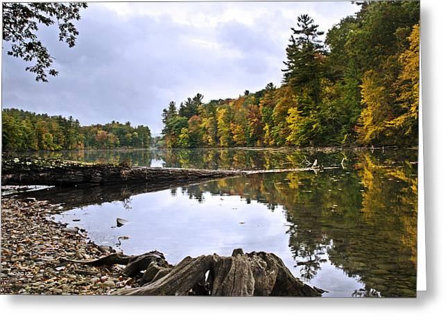 Peaceful Autumn Lake Greeting Card by Christina Rollo