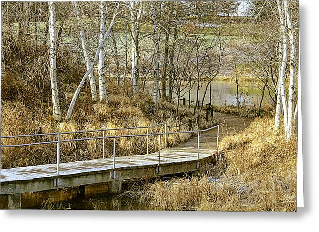 Fall Scenes Greeting Cards - Peaceful Autumn Scenery Greeting Card by Julie Palencia