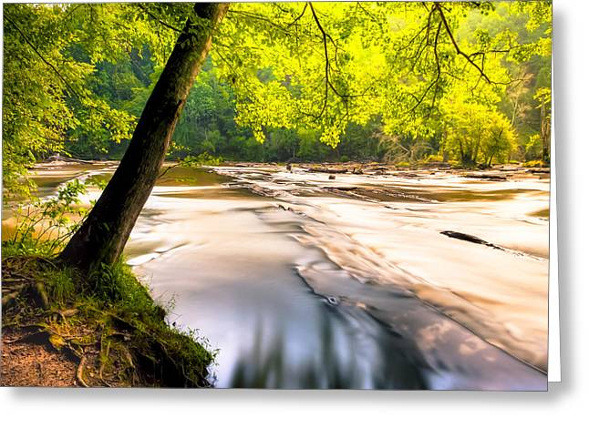 Sweetwater Greeting Cards - Peaceful Banks of Sweetwater Creek Greeting Card by Mark Tisdale