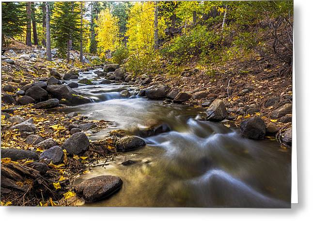 Recently Sold -  - Beautiful Creek Greeting Cards - Peaceful Creek Greeting Card by Maria Coulson